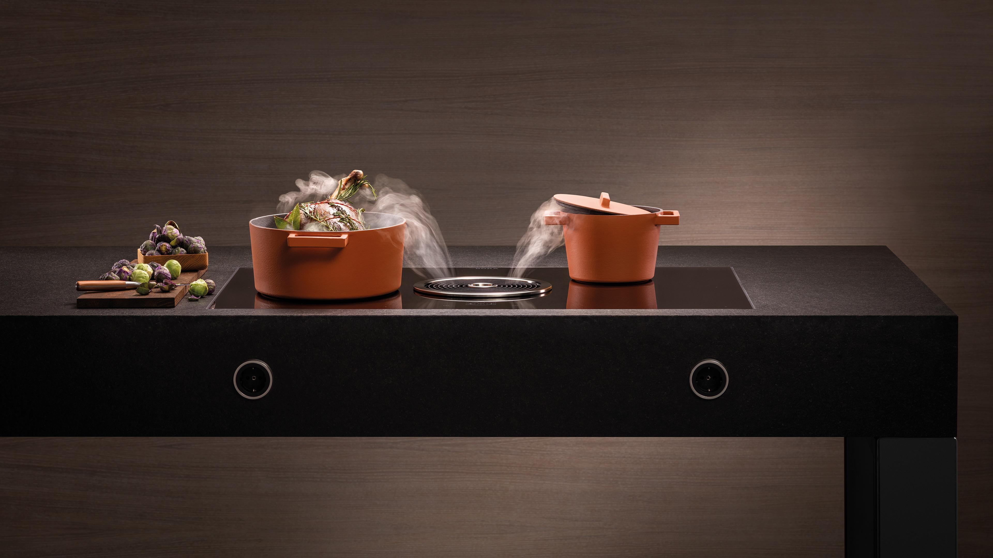 Cuisson et aspiration vapeurs et odeurs aliments BORA le professionnel de l'électroménager pour cuisines