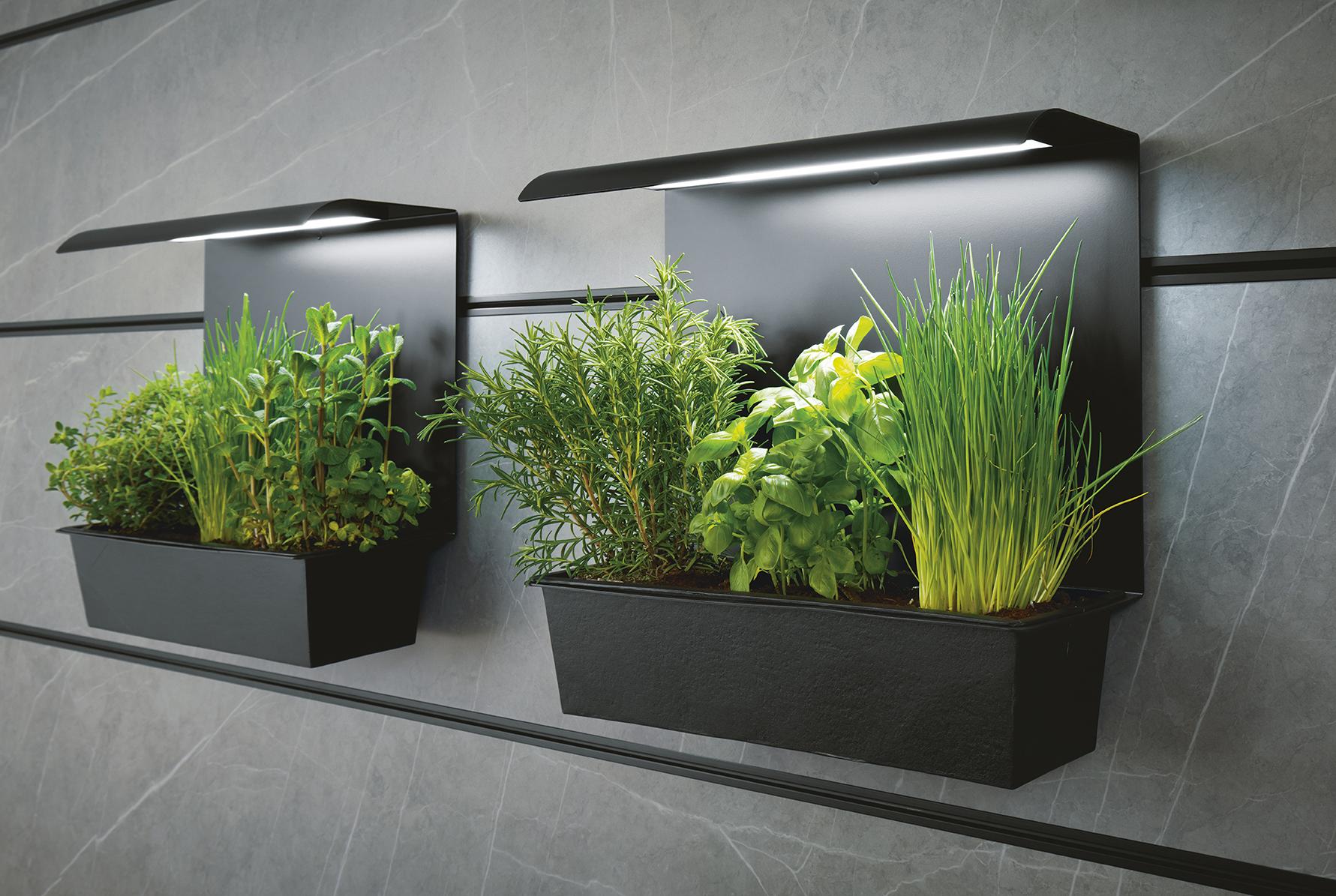 décoration intérieur moderne avec plantes intégrées atmosphère unique green